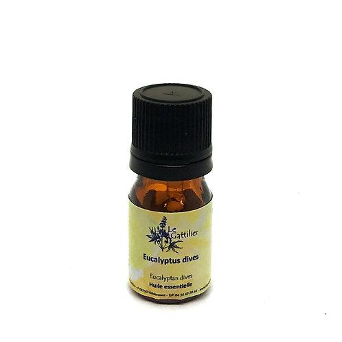 eucalyptus dives huile essentielle bio paris pharmacie des deux lions