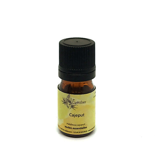 cajeput huile essentielle bio paris pharmacie des deux lions
