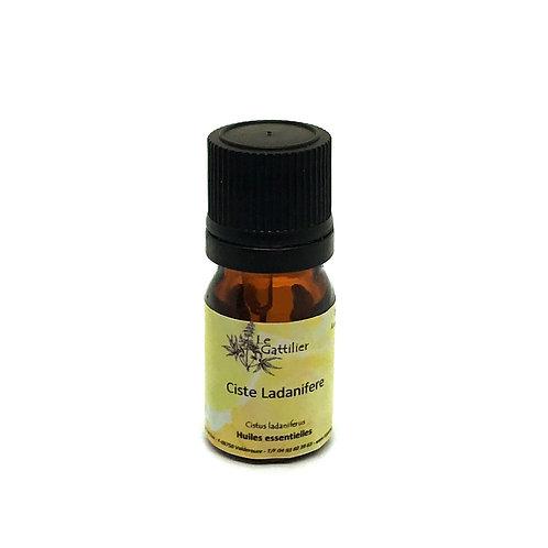 ciste ladanifère huile essentielle bio paris pharmacie des deux lions