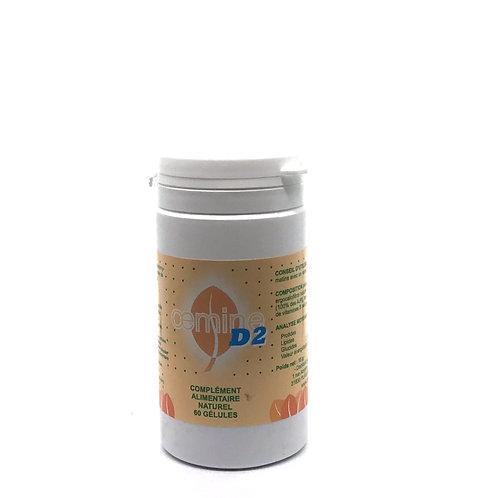 Vitamine D2 végétale