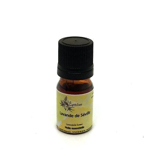 lavande huile essentielle bio paris pharmacie des deux lions