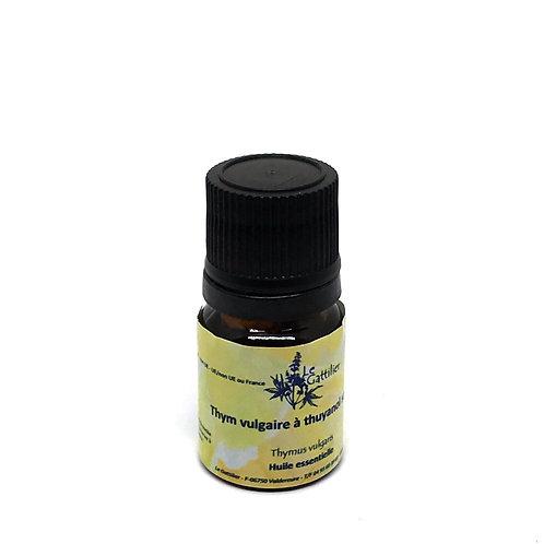 thym thujanol huile essentielle bio paris pharmacie des deux lions