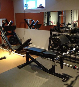 full gym and professional exercise equipment