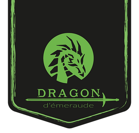 logo dragon d'emeraude site_Plan de trav