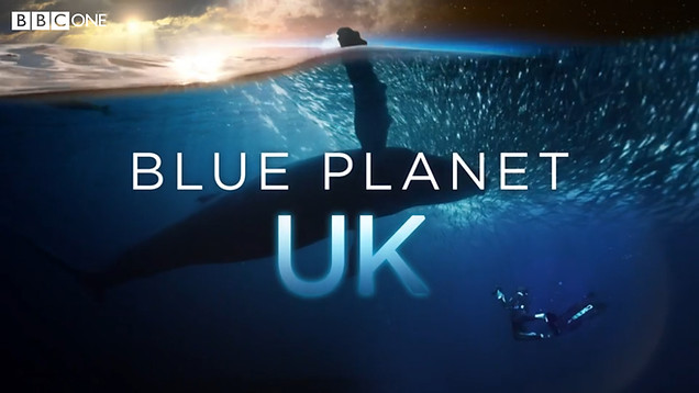 Blue Planet UK - S1 E4