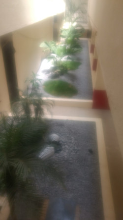 View from the Staircase