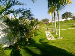 Lawn area - View from the corner