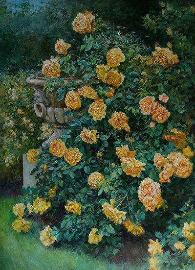Розы в парке 80х110