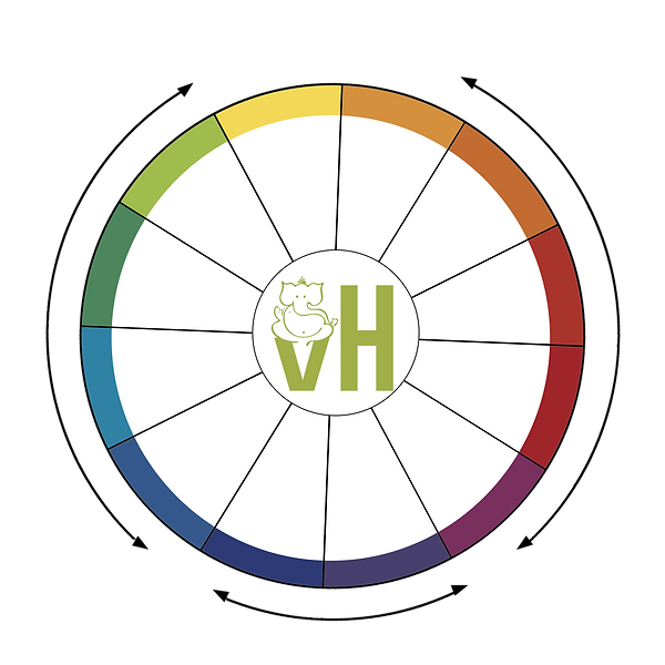 Color Wheel - vedahealth 9_NO TEXT.png