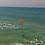 Thumbnail: Drone-Sky-Hook Release & Drop Gen-2 for DJI Mavic PRO