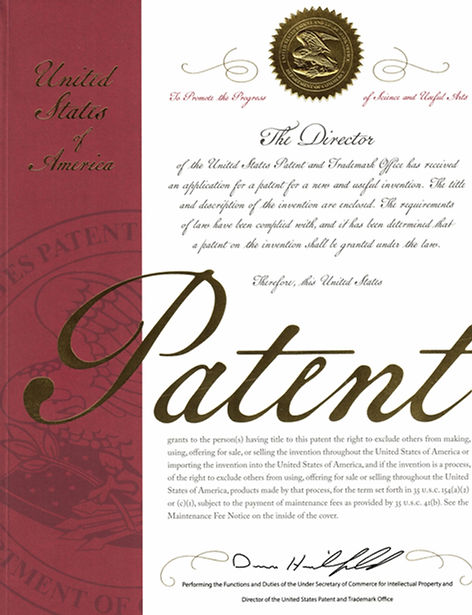 US Patent No 10933995 - cover page.jpg