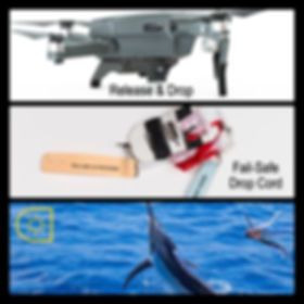 Drone Daylght System