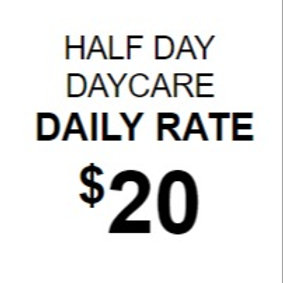 Half Day Daily Daycare