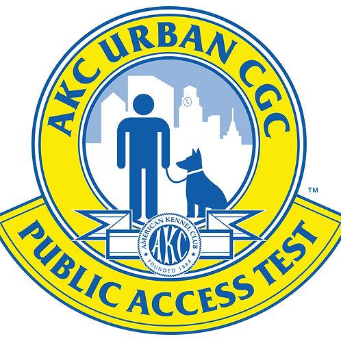Public Access Test