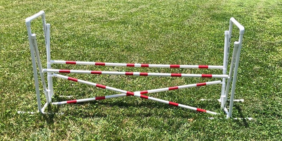 Proper Jumping/Crosses Agility Workshop