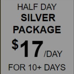 Half Day Silver Daycare Package Rate