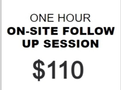 One Hour ON-SITE Private for REACTIVITY/AGGRESSION