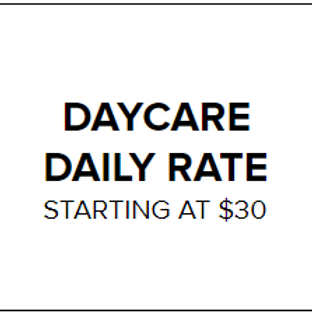 Daily Daycare