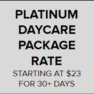Platinum Daycare Package Rate