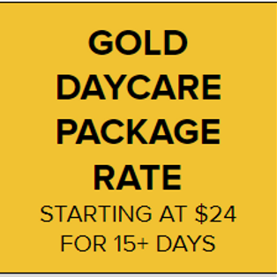 Gold Daycare Package Rate