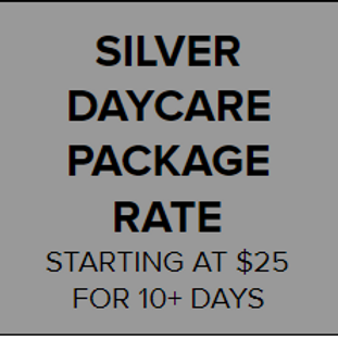 Silver Daycare Package Rate