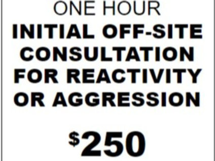 One Hour Initial OFF-SITE Consultation for Reactivity/Aggression
