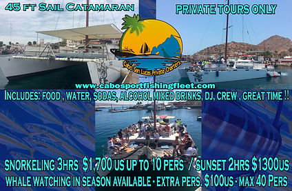 BEST CABO DISCOUNT SNORKELING , SUNSETOR WHALE WATCHING
