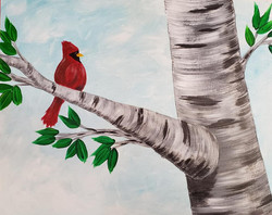 Summer Cardinal Visitor