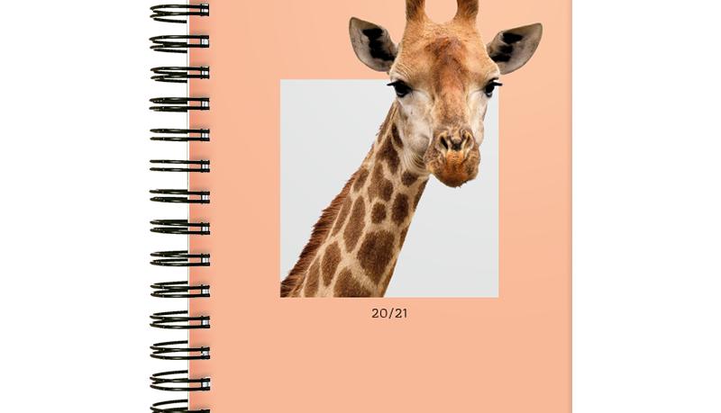 School Planer edycja 2020/2021