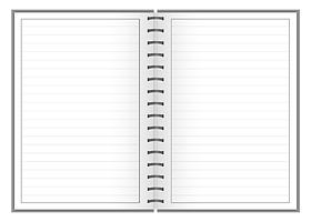 Notes-A4-B5-A5-B6-w-linie-9mm-ramka.png