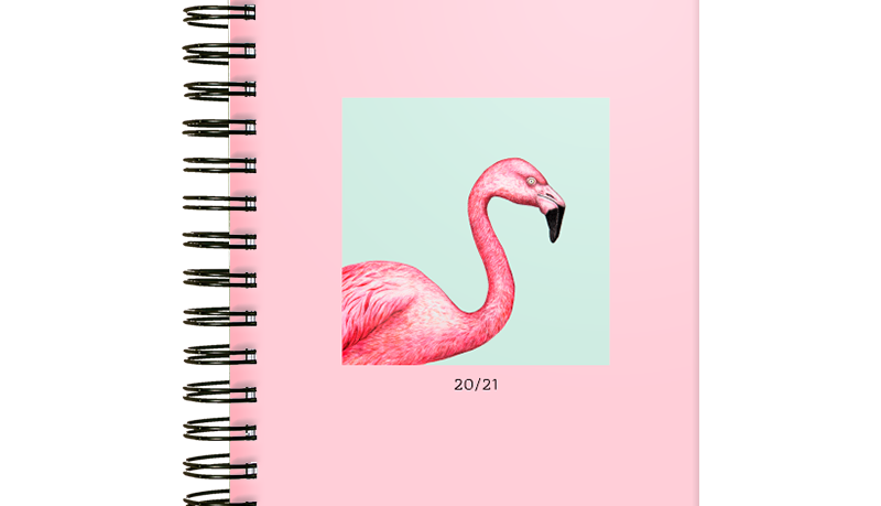 Student Planer edycja 2020/2021