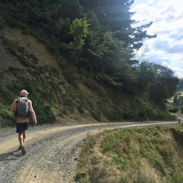 Backcountry dirt road walking.