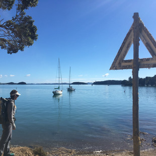 Walking Through the Bay of Islands