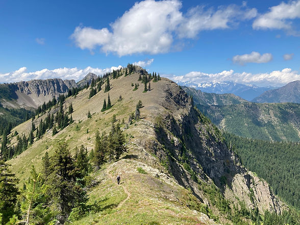 Hiker on ridge in Pasayten Wilderness on the Cougar Traverse