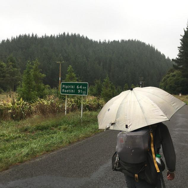 Walking the road to Pipiriki.