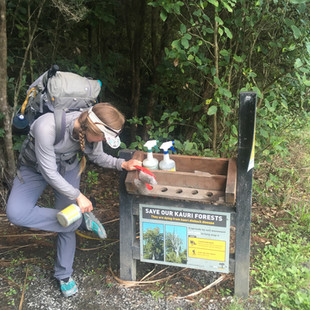 Helping to prevent the spread of Kauri die back disease.
