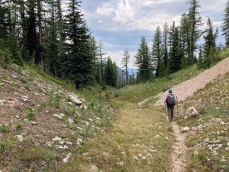 Hiker heading over Dollarwatch Pass in Pasayten Wilderness