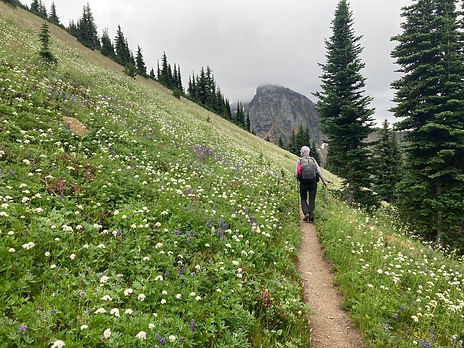 Hiker walking through wildflowers on Pacific Crest Trail on the Cougar Traverse route