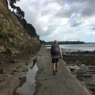 Heading up the North Coast from Auckland.