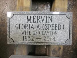 Mervin.JPG
