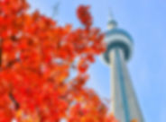toronto-fall-cn-tower-orange-leaves.jpg