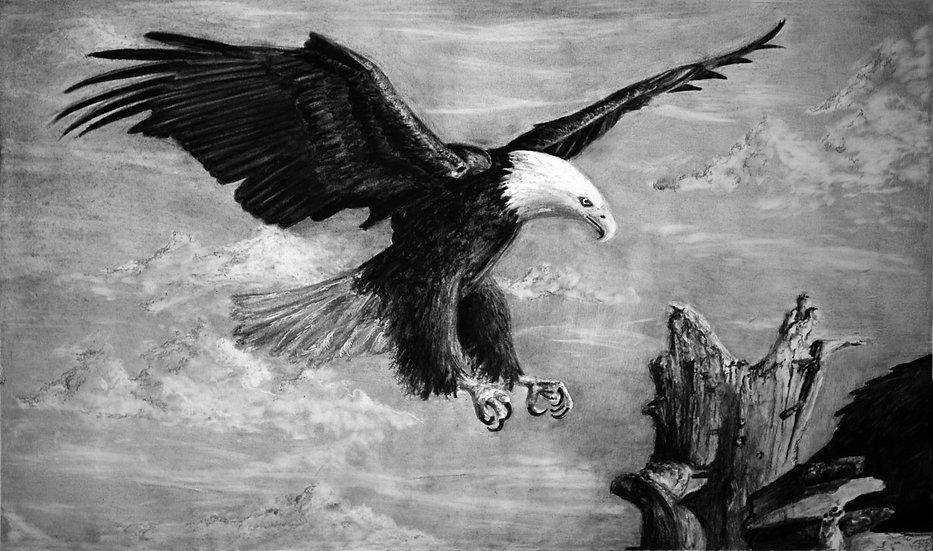 """Eagle"" Fine Art Print"