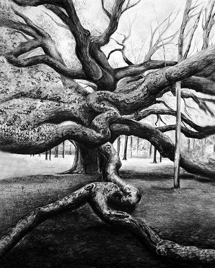 """""""Angel Oak"""" Fine Art Print"""