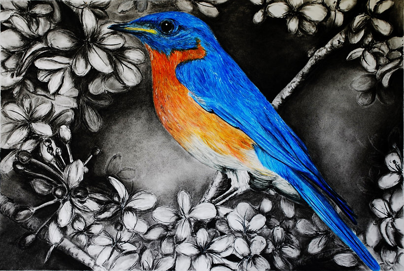 """Bluebird"" LIMITED EDITION Fine Art Print"