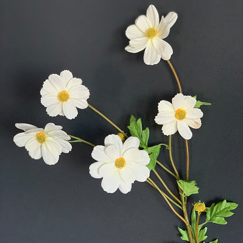 WHITE JAPANESE ANEMONE STEM