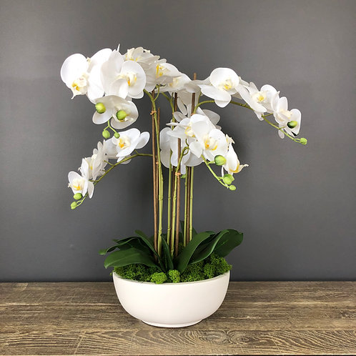 'PERFECTLY POTTED' 5-STEM FAUX MOTH ORCHID