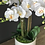 Thumbnail: 'FLOATING PHALIE'S' POTTED 8-STEM FAUX MOTH ORCHID