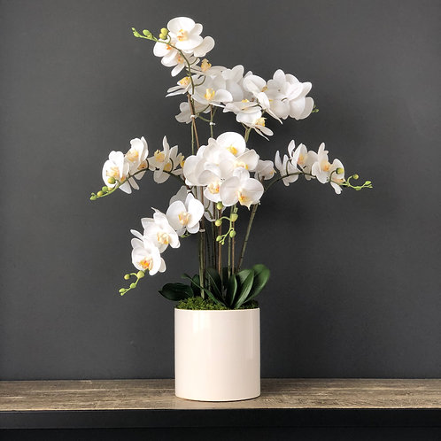 'FLOATING PHALIE'S' POTTED 8-STEM FAUX MOTH ORCHID