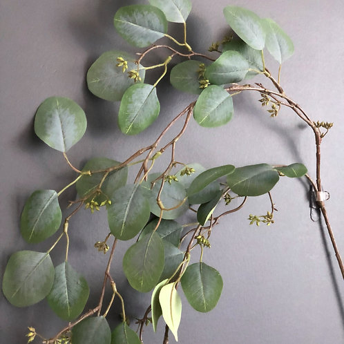 HANGING SEEDED EUCALYPTUS FOLIAGE STEM
