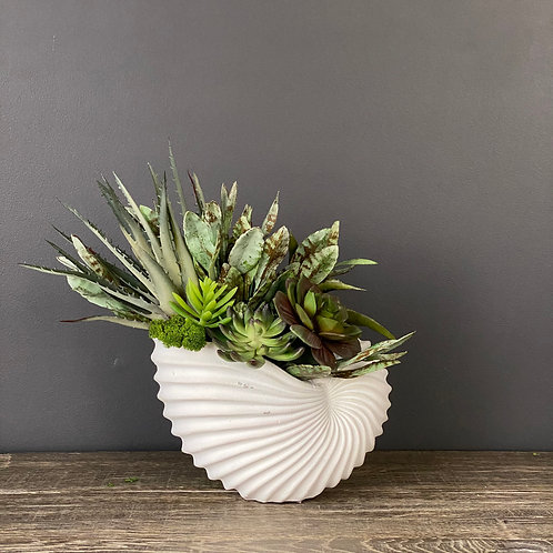 SEASIDE SUCCULENTS (SMALL)